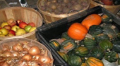 Garden Harvest_FI