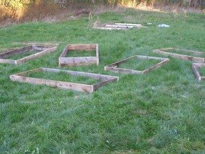 raised-bed boxes