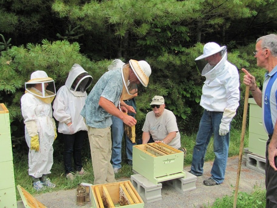 kennebec open-hive