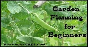 Garden planning for beginners