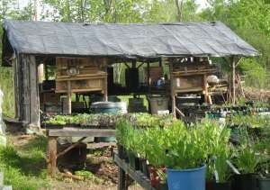 farming resourcefulness