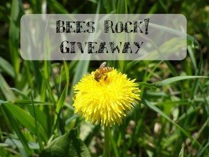 Bees Rock! Giveaway Event