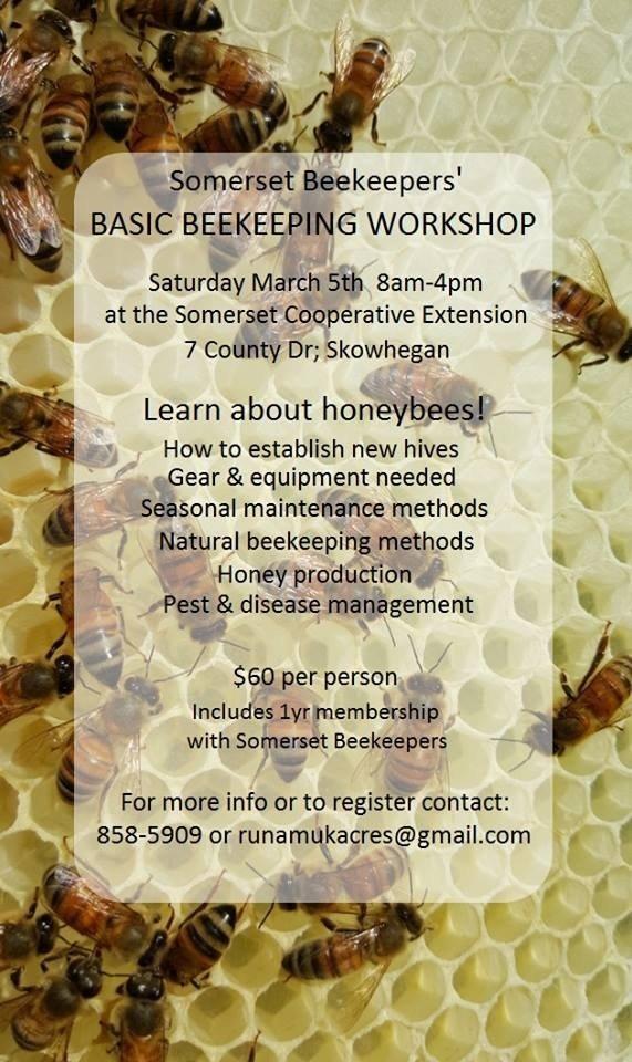 basic beekeeping course