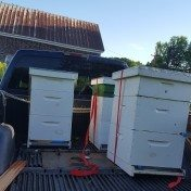 Hives on the truck